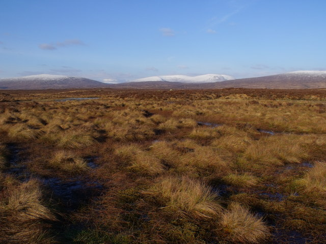 An averagely dry part of Rannoch Moor
