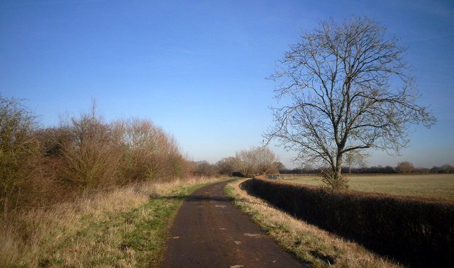 Track off the Moor