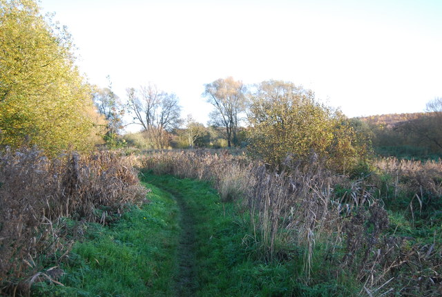 Footpath in the Stour Valley