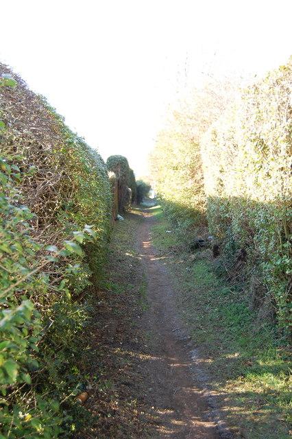 Path Upperthorpe Road to Westthorpe Road