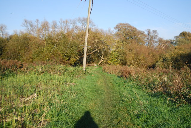 Footpath to the Westbere Marshes