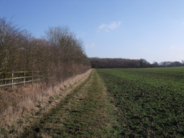 Footpath past Rowleaze Wood