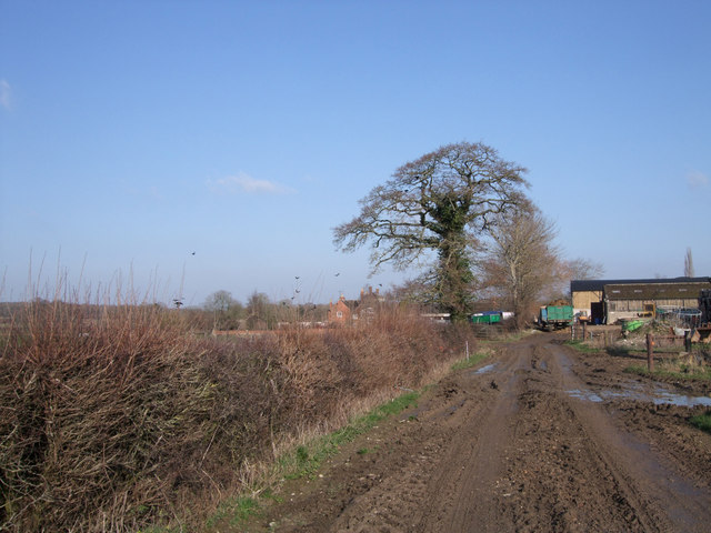 Southern approach to Step Farm