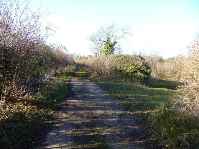 Surfaced lane
