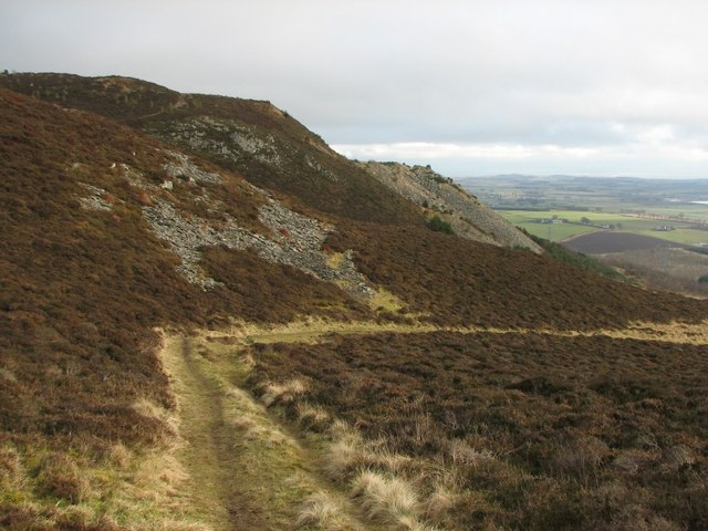 Track, Auchterhouse Hill