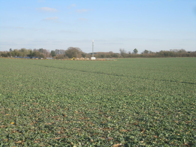 View towards sewage works