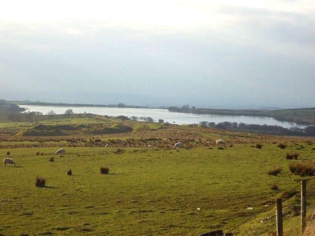 Mountcow, pasture