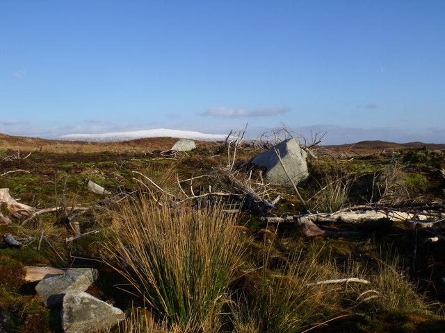 Clearfell on Rannoch Moor