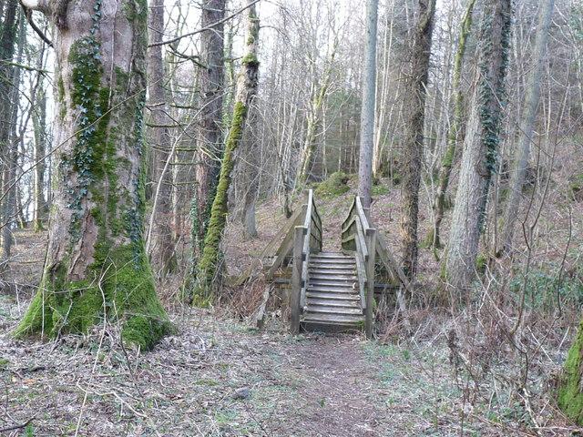 Glenapp Woodland Walk
