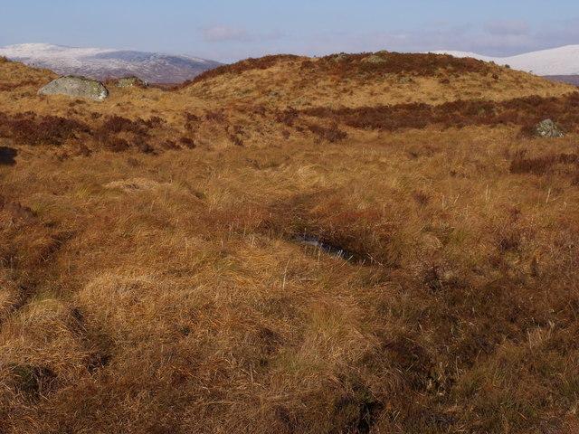 Hummocks on Rannoch Moor near Lochan Beinn Chaorach