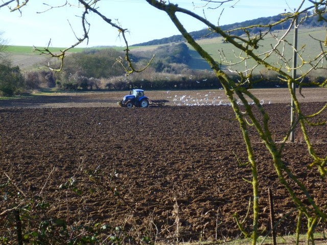 Tractor at work near Crows Hill Farm