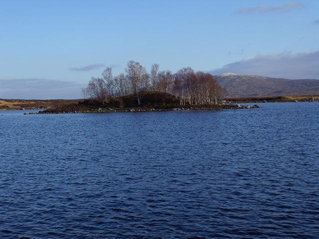 Wooded isle on Loch Ba on Rannoch Moor