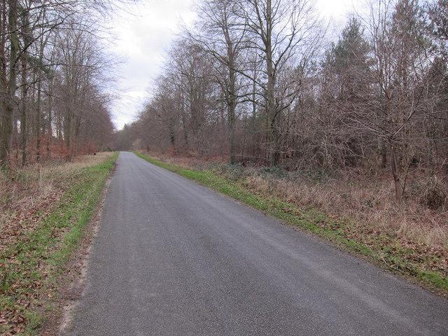 Minor Breckland road