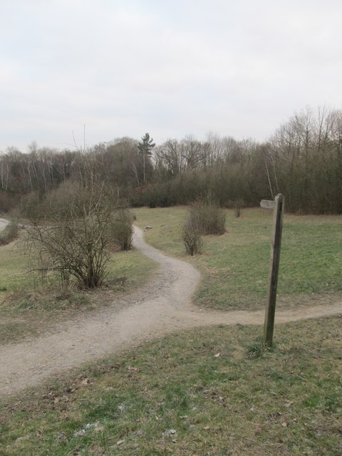 Path in Southwater Country Park