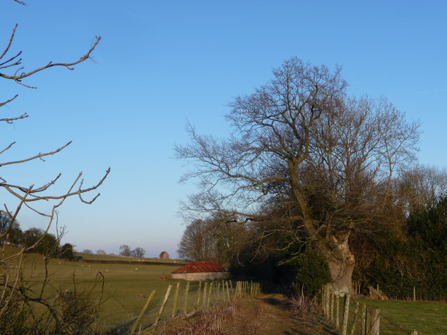 Path with view to two old barns near Oswestry