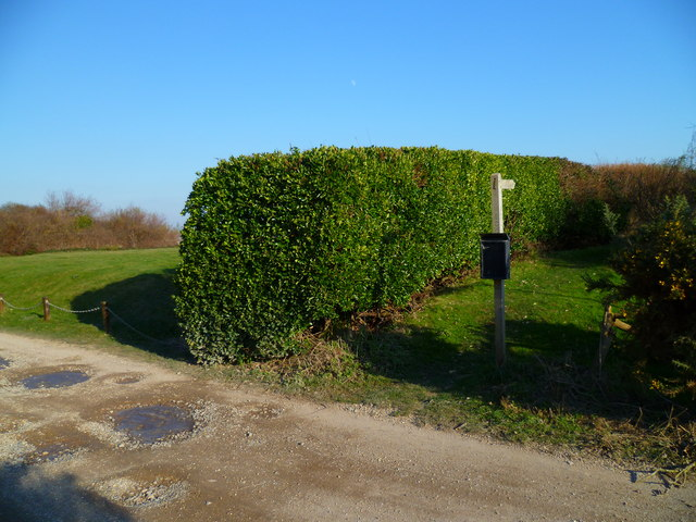 Footpath from Park Copse in Selsey