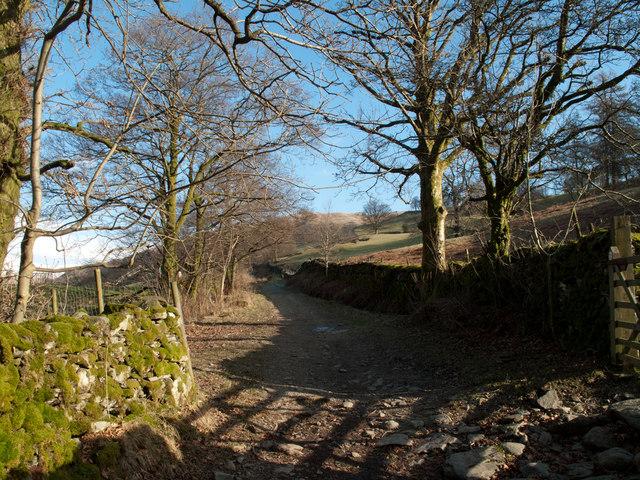 Lane rising to the Garburn Road
