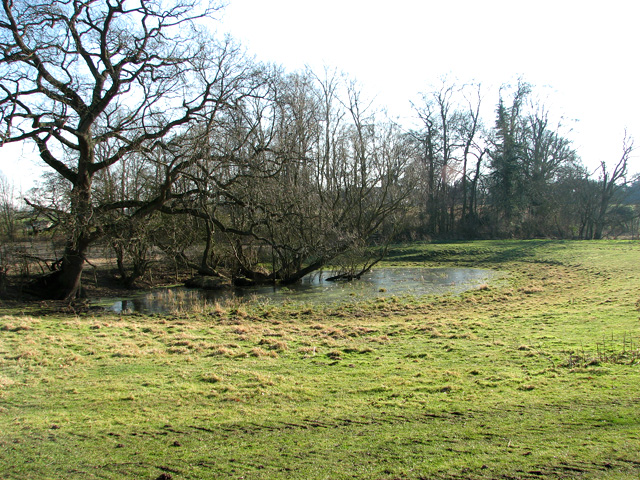 Pond in pasture by Sibton Abbey