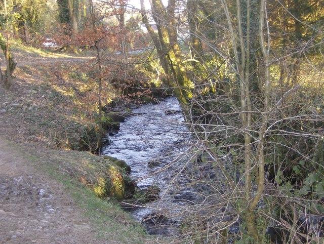 The Tremar Stream