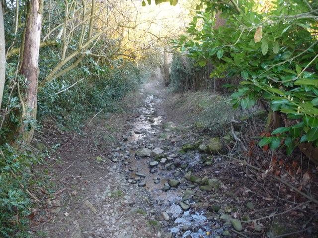 Sunken lane in Oswestry