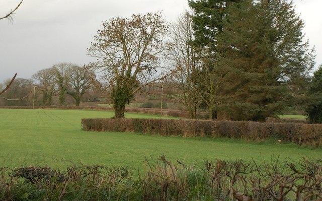 Lane past Gullyhayes Farm
