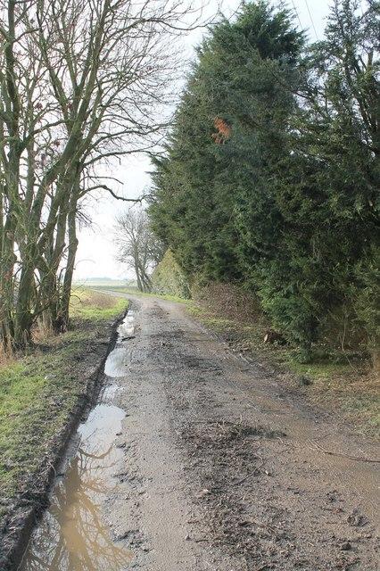 Gride Bank - A muddy track