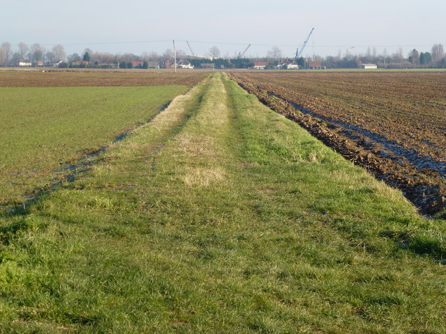 Grass track over the Allotment Gardens, Sutton Bridge