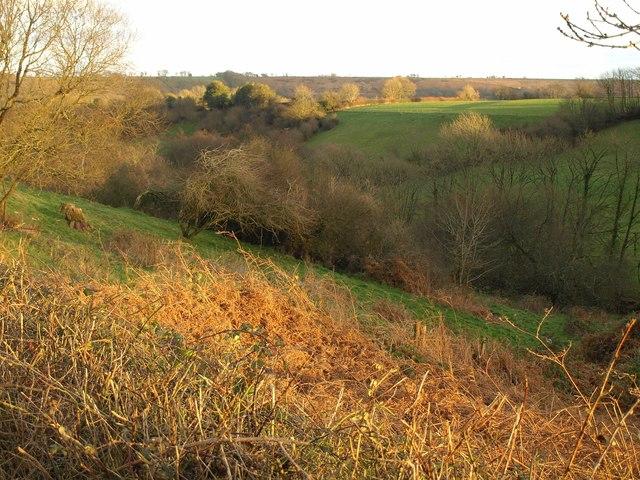 Valley below Overday Farm