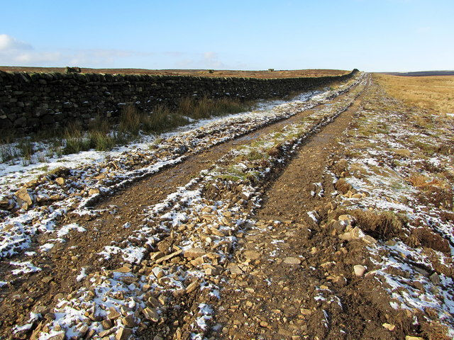 Track on Shepherd Close
