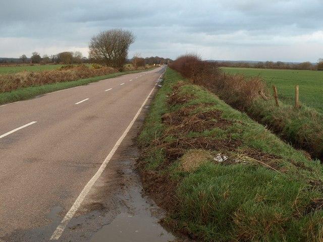 Road across Luppitt Common