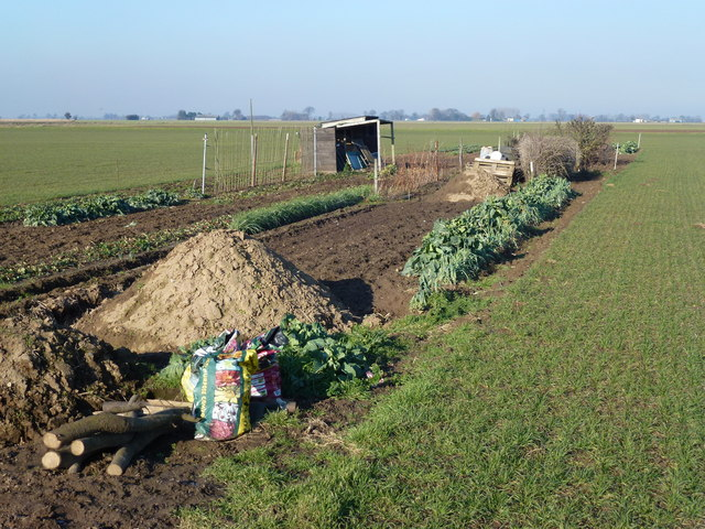 The last traditional allotment