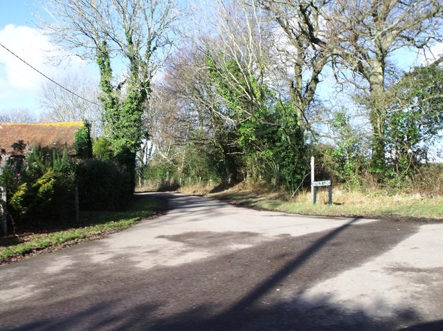 Looking into Grovely Lane near Dallington