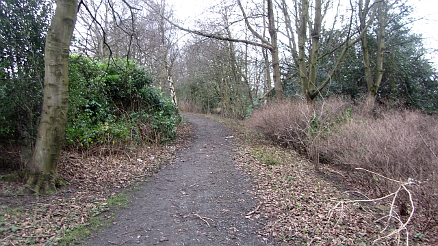 Former driveway, Edmonstone