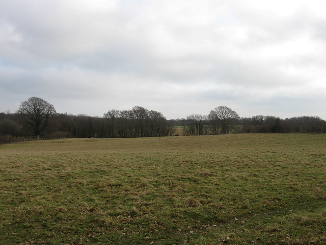 Two Acres
