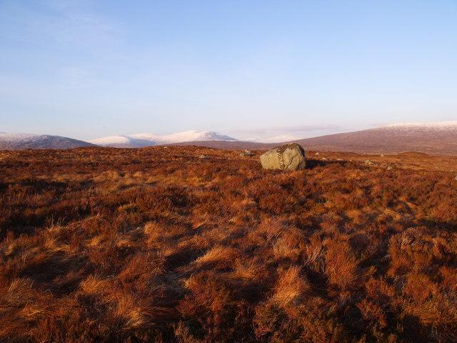 Dry ridge on Rannoch Moor