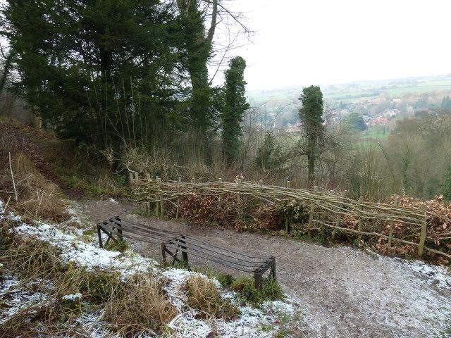 Seat on the Zig Zag Path