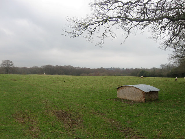 Site of Holm Wood