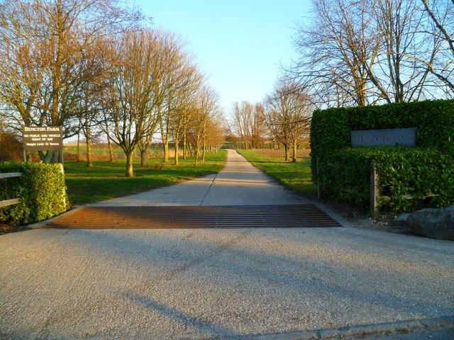 Driveway to Runcton Farm and Saltham Grange