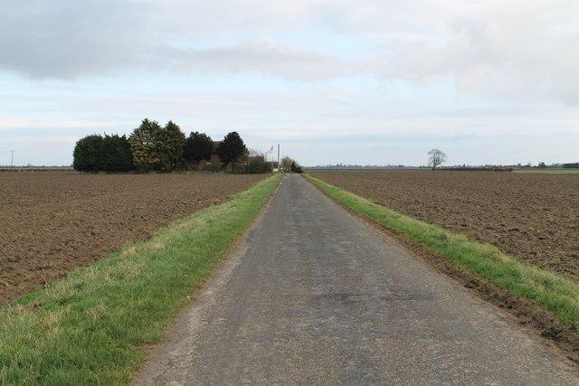 Ings Drove towards Ivy House farm