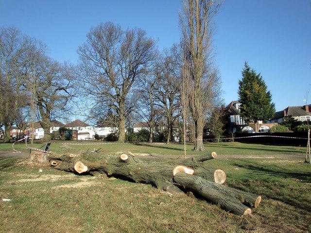 Poplars Down, Oakwood Park, London N14