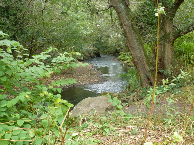 Avon Lwyd from the nature trail at Cwmbran Boating Lake