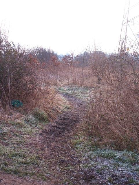 North Moor footpath