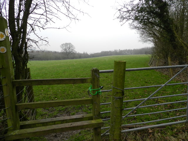 Padlocked gate by Goosehill Wood