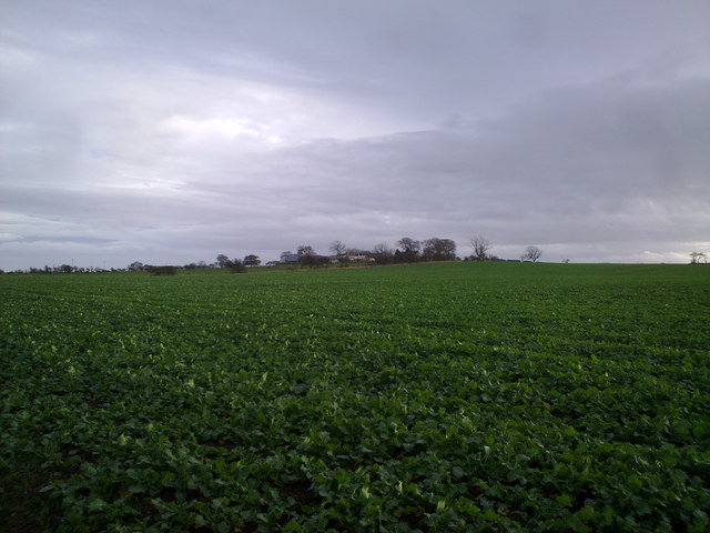 View across the fields East of Dinnington