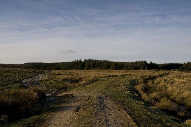 Where the path divides, Cornabus, Islay
