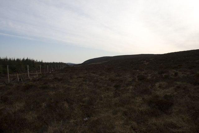 Moorland on edge of Cornabus Forest, Islay