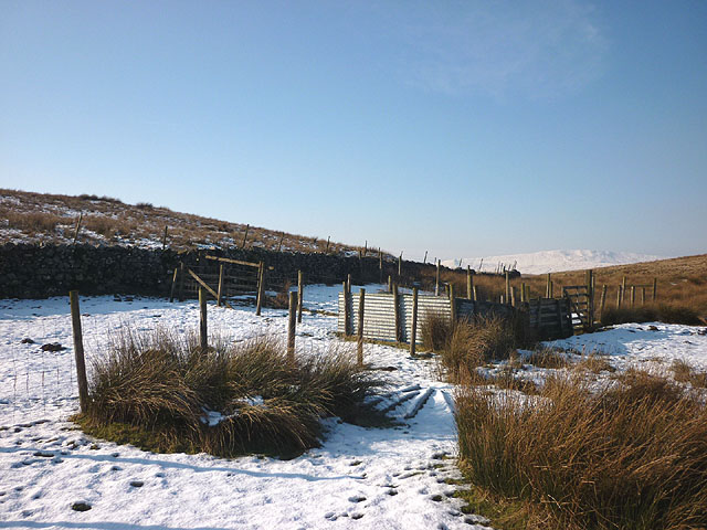 Sheep pens near New House Barn