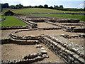 SP3915 : Roman Ruins, North Leigh by Des Blenkinsopp
