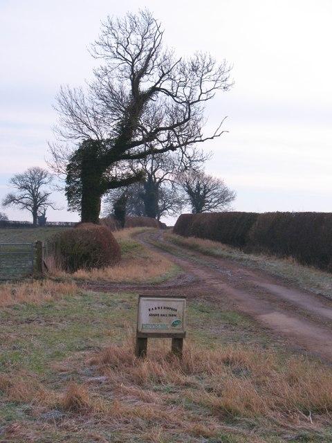 Adam's Field Lane