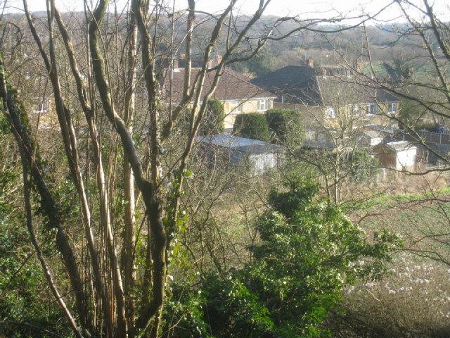 Houses in Water Ridges